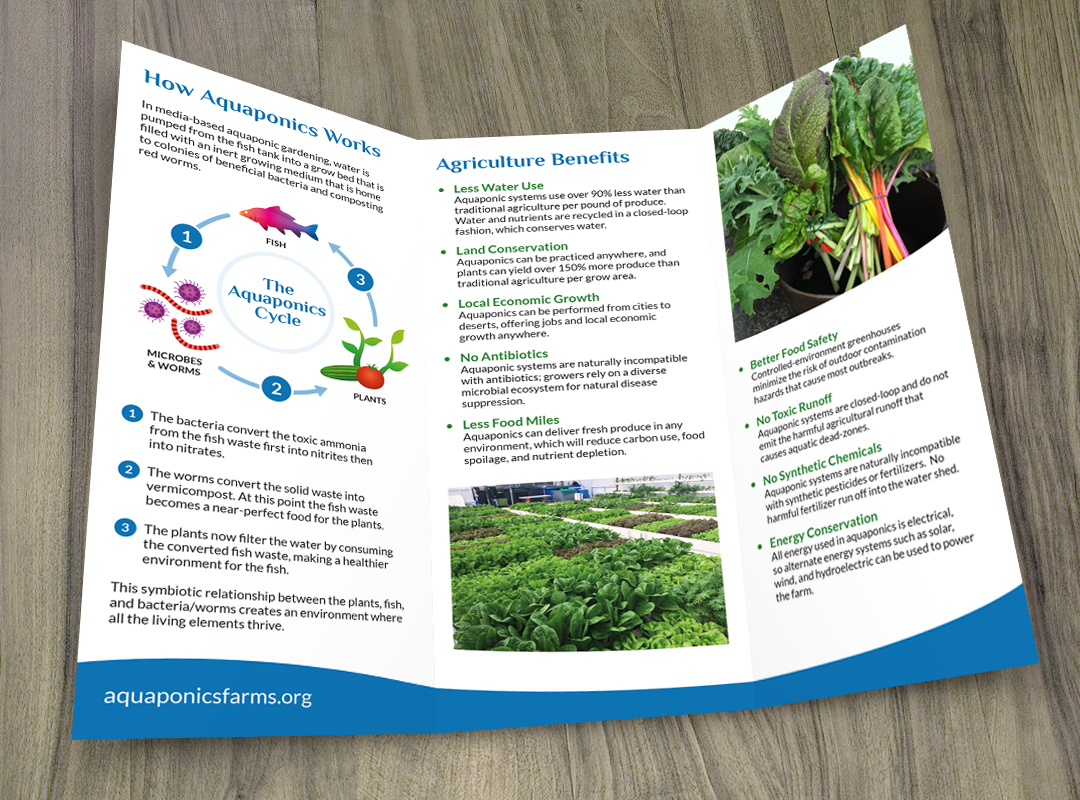 Aquaponics International Farms LLC - Pete Borlace